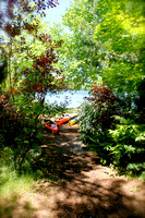 kayaks in the woods