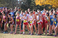 HRHS Cross Country 11/13/16
